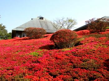 DIC川村記念美術館0113.jpg