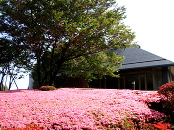 DIC川村記念美術館0120.jpg