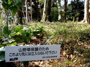 DIC川村記念美術館0205.jpg