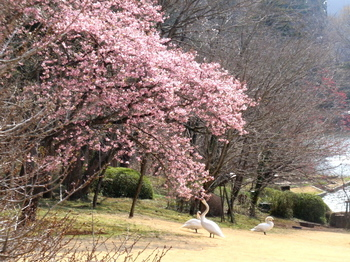 DIC川村記念美術館0289.jpg