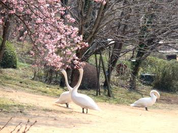 DIC川村記念美術館0290.jpg