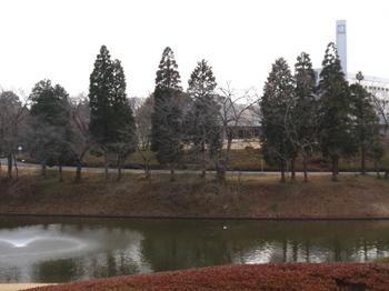 DIC川村記念美術館0470.jpg