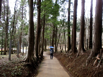DIC川村記念美術館1292.jpg
