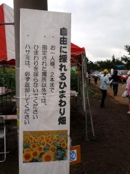 ひまわりフェスティバル0704.jpg