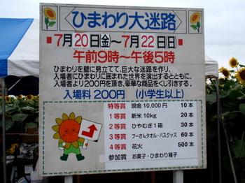 ひまわりフェスティバル0867.jpg