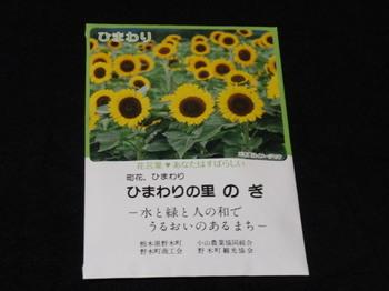 ひまわりフェスティバル0973.jpg