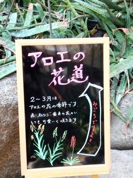 グリーンセンター4209.jpg
