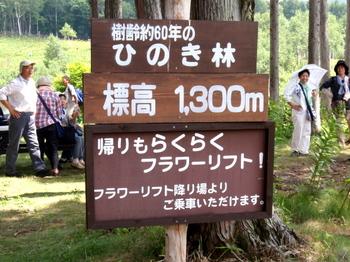 ハンターマウンテンゆりパーク0048.jpg