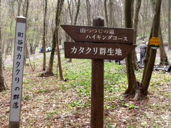 万葉自然公園 かたくりの里0782.jpg