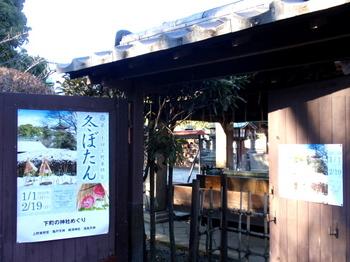 上野・東照宮ぼたん苑1427.jpg