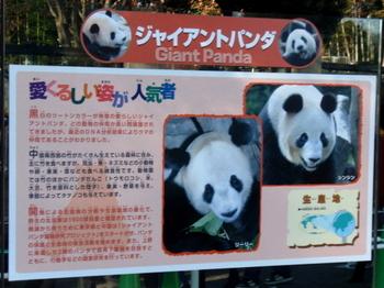 上野動物園1486.jpg
