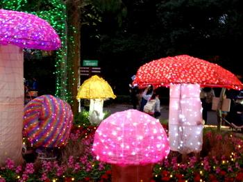 国営武蔵丘陵森林公園0372.jpg