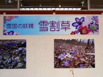国営武蔵丘陵森林公園1169.jpg