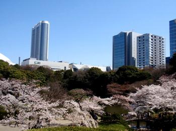 小石川後楽園1950.jpg