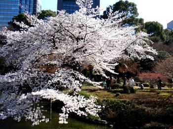 小石川後楽園2030.jpg