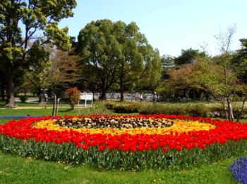 昭和記念公園0038.jpg