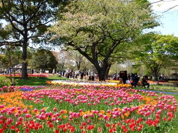 昭和記念公園0044.jpg