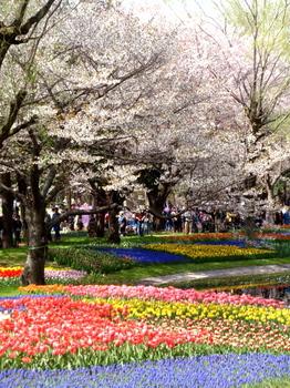 昭和記念公園0176.jpg