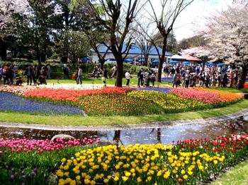 昭和記念公園0181.jpg