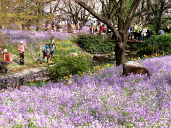 昭和記念公園0244.jpg
