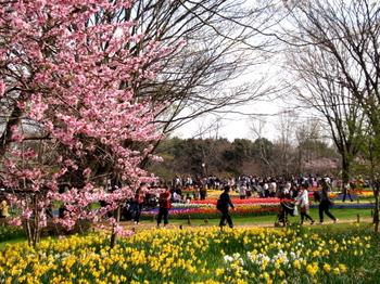 昭和記念公園0279.jpg