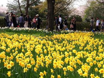 昭和記念公園0290.jpg