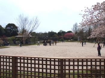 昭和記念公園0293.jpg
