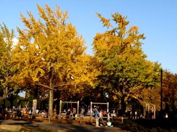 昭和記念公園0408.jpg