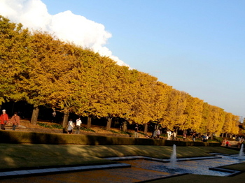 昭和記念公園0419.jpg