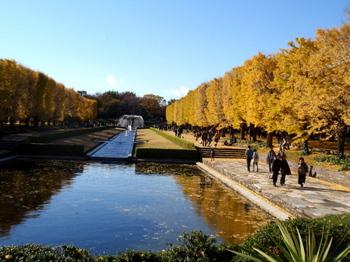 昭和記念公園0842.jpg