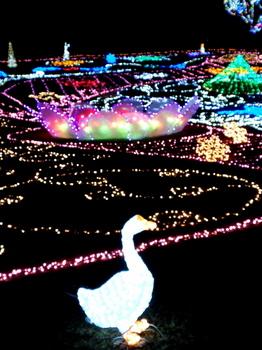昭和記念公園0879.jpg