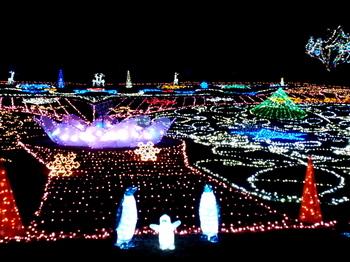 昭和記念公園0891.jpg