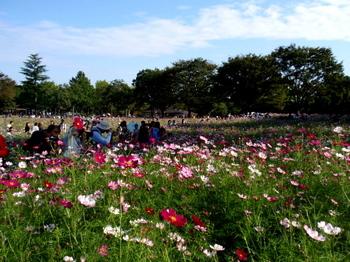 昭和記念公園0892.jpg