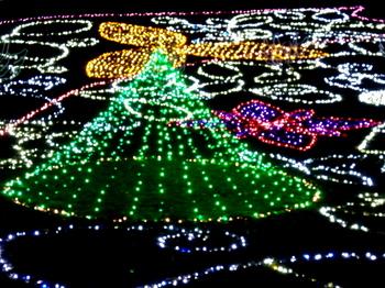昭和記念公園0922.jpg