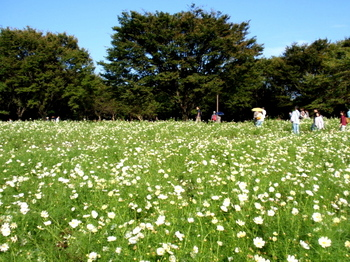 昭和記念公園0925.jpg