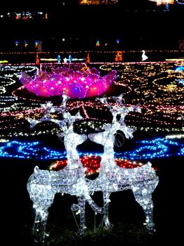 昭和記念公園0944.jpg