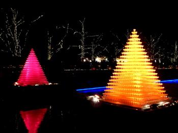 昭和記念公園1014.jpg
