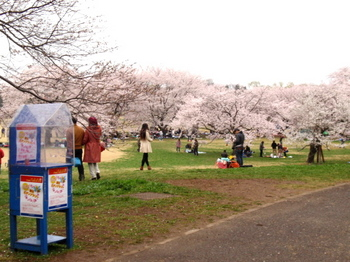 昭和記念公園1279.jpg