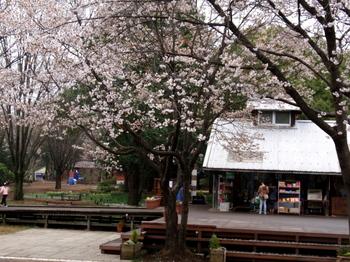 昭和記念公園1329.jpg