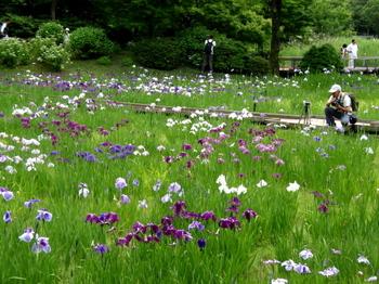 昭和記念公園1400.jpg