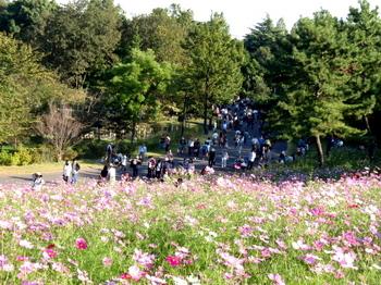 昭和記念公園1402.jpg