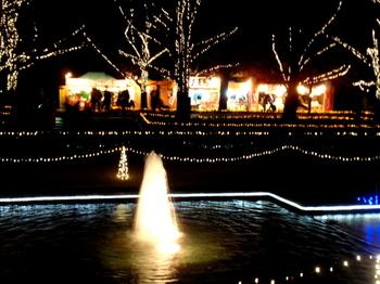 昭和記念公園1419.jpg