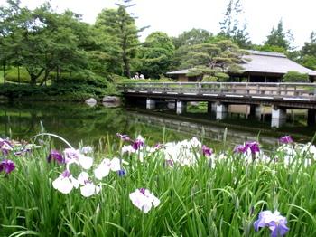 昭和記念公園1562.jpg