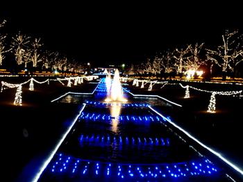昭和記念公園1571.jpg