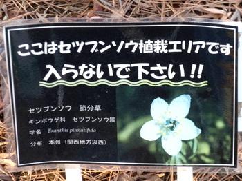 昭和記念公園1612.jpg