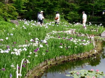 昭和記念公園1656.jpg