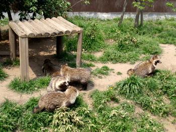 東武動物公園0433.jpg