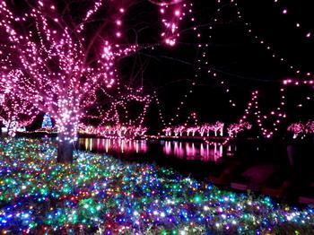 東武動物公園0658.jpg
