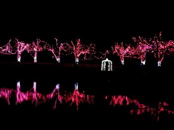 東武動物公園0667.jpg