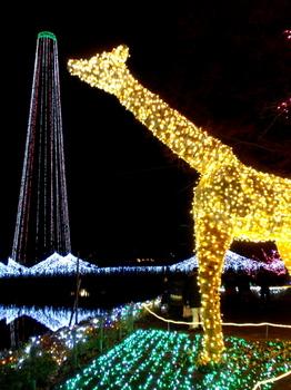 東武動物公園0705.jpg